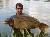 Jack Henderson with a MASSIVE common